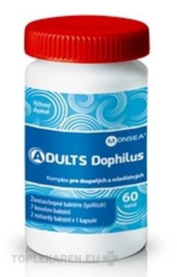 ADULTS DOPHILUS